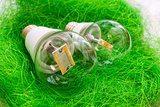 two LED bulb E27 with different chips in large transparent glass