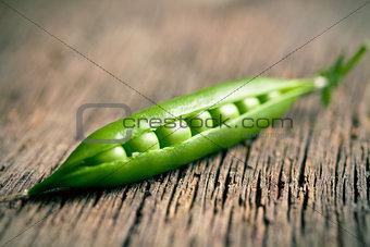 green pea pod
