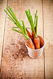 fresh carrots bunch in white bucket