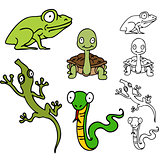 Reptile and Frog Set