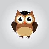 owl grad