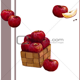 Watercolor apples in the box.