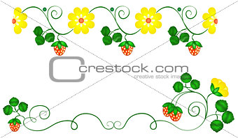 Flowers and Berries Border