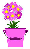 daisies in bucket