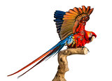 Scarlet Macaw (4 years old) perched on a branch and flapping its