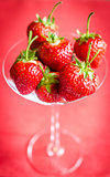 Fresh strawberries in martini glass