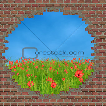 Broken brick wall and grass field