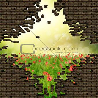 Broken brick wall and grass field