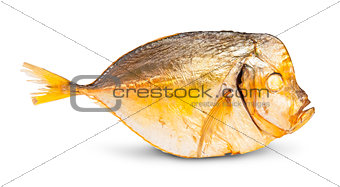 Single Smoked Moonfish
