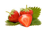 Strawberry with leaves on a white background