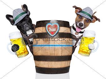 two bavarian dog