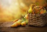 Autumn pears