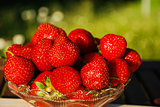 Bowl with fresh strawberries at green background