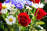 Focus on a red rose in a bouquet of summer flowers