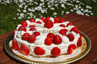 Homemade cake with cream and strawberries