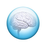 White brain. Spherical glossy button