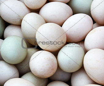 Many Duck eggs on a market