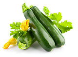 Fresh zucchini with green leaf and flower