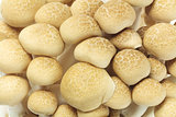 Japanese Brown Beech Mushrooms
