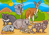 marsupials animals cartoon illustration