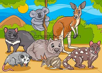 marsupials animals cartoon illustration