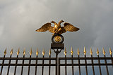 gold double eagle on a steel fence