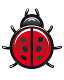 Red and black spotted cartoon ladybug