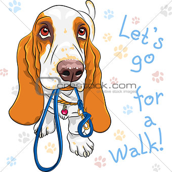 vector baby dog Basset Hound breed