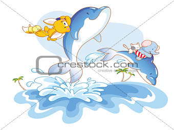 animal swimming with dolphins