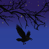 Dark crow bird flying over scary halloween night tree vector