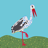 White stork standing on a meadow