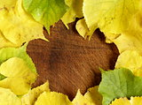 yellow autumn leaves on a wooden background