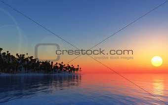 3D tropical background