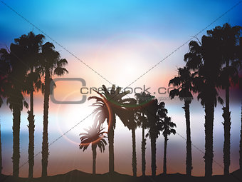 Summer palm tree landscape