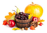 Autumnal harvest fruit and vegetables
