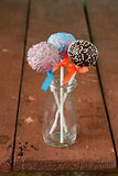 Variety of colorful cake pops - chocolate, vanilla and caramel flavors
