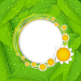 Summer Abstract Background. Vector Illustration.