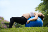 Pregnancy and motherhood-pregnant woman swiss ball