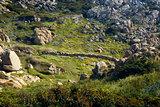 Santa Teresa di Gallura-Sardinia-Italy