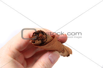 old cigar in human hand