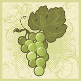 Retro-styled green grape bunch