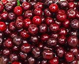 Ripe cherry closeup as background