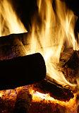 Burning logs closeup