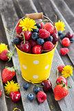 Fresh summer berries in a bucket