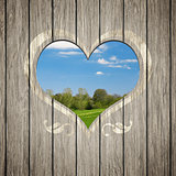 wooden heart nature