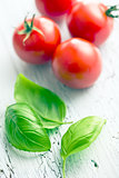 basil leaves and tomatoes