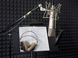 Condenser microphone in recording room