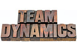 team dynamics in wood type