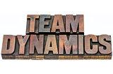 team dynamics in wood type