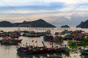 Fishing Fleet in Cat Ba Island